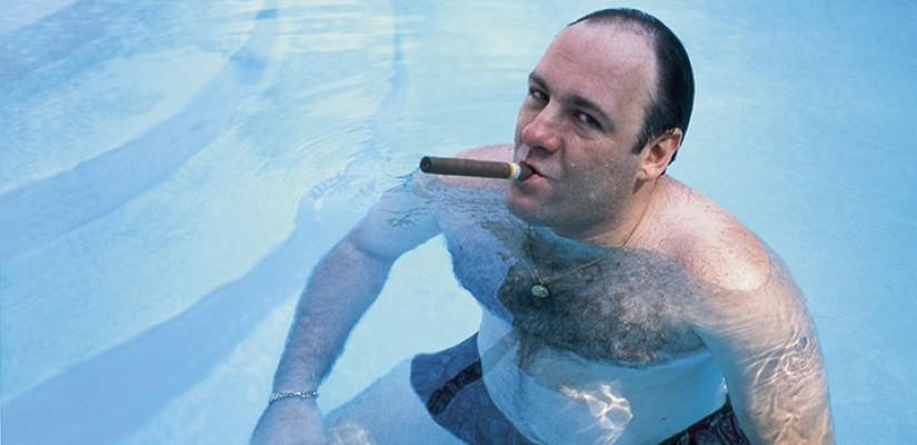 Cattivi nella serie: Tony Soprano