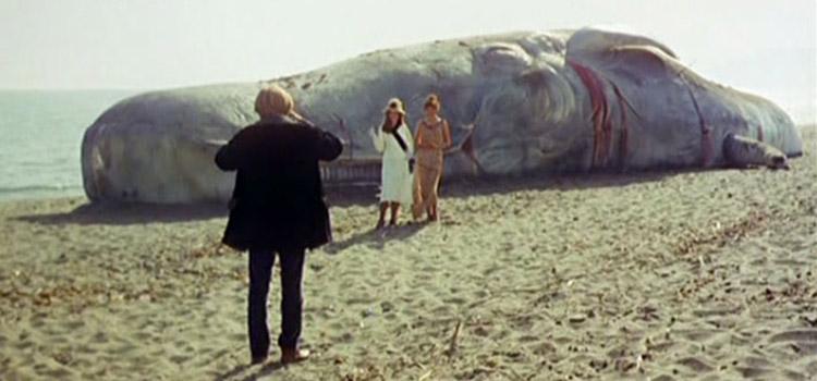 Il seme dell'uomo, film 1969