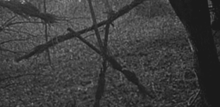 The Blair witch project. Film horror